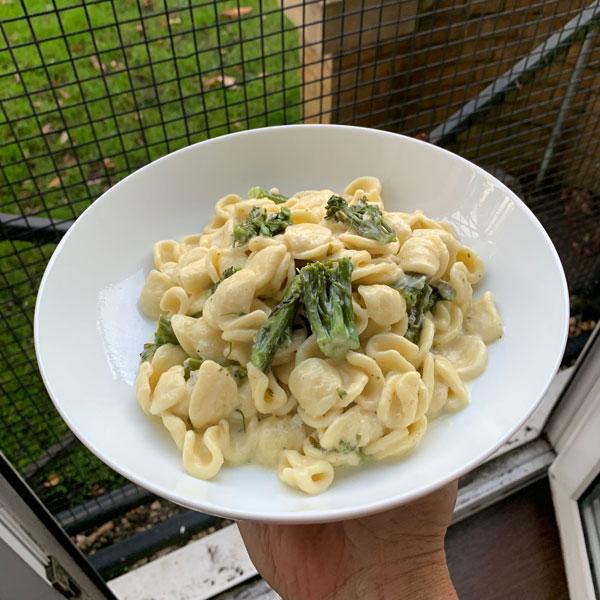 oricchiette brocoli gorgonzola